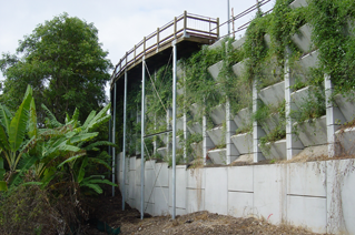 Reinforced Earth® Green Wall - Bayview, Noosa QLD